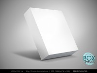 Box Template Free PSD