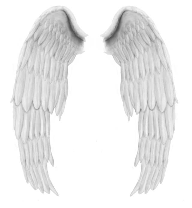 is angel wings this psd template free angel wings psd angel wings psd