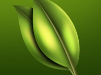 tree_leaves_PSD_by_Tsunamy_boy