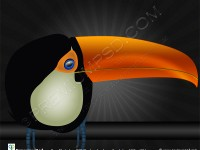 Toco-Toucan-Bird-design