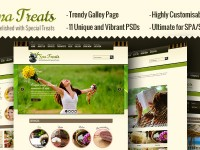 Spa Treats – Health / Spa Salon PSD Template